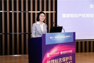 鼎宏知识产权集团成功举办地理标志保护与运用实务论坛